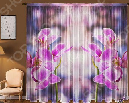 Здесь можно купить «Орхидея»  Комплект тюля ТамиТекс «Орхидея»