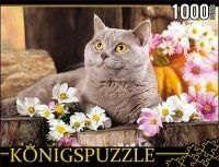 Пазл Konigspuzzle 1000 эл 68,5*48,5см Британский кот ГИК1000-6552