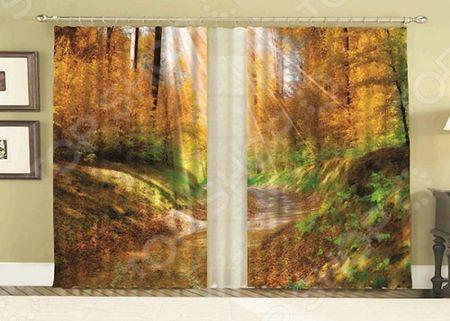 Комплект фотоштор с тюлем «Золотая Осень»